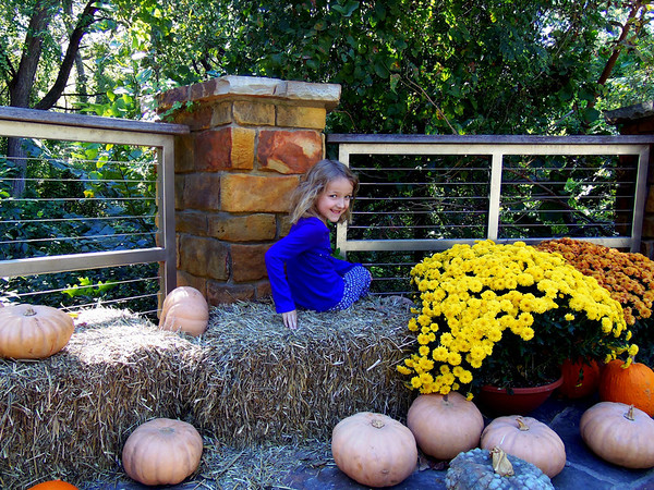 Claire next to the fall pumpkins at the Fort Worth Botanic Gardens