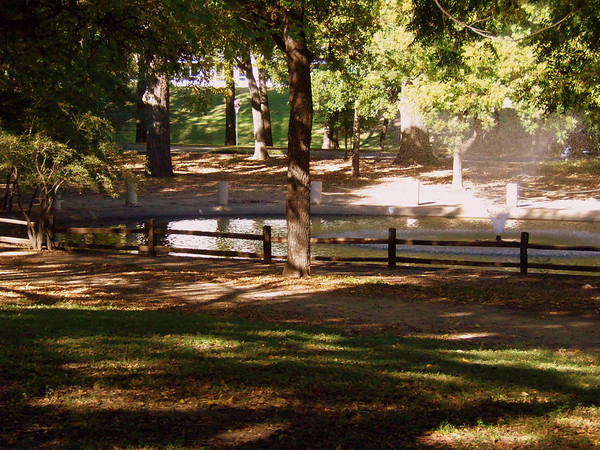 Duck Pond from Fort Worth Train