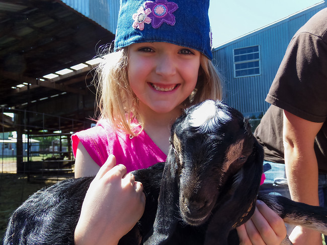 Girl holding a baby goat at Homestead Farms in Keller Texas