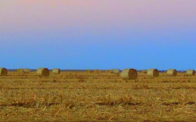 Sunset over hay in the Texas Panhandle